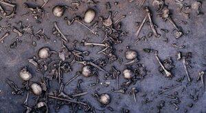 Bitwa nad rzeką Tollense - tajemnicze starcie w starożytnej Europie...